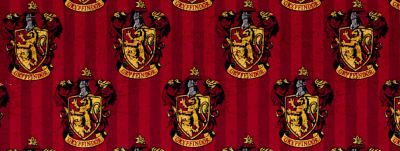 HARRY POTTER = GRYFFINDIOR !!!!